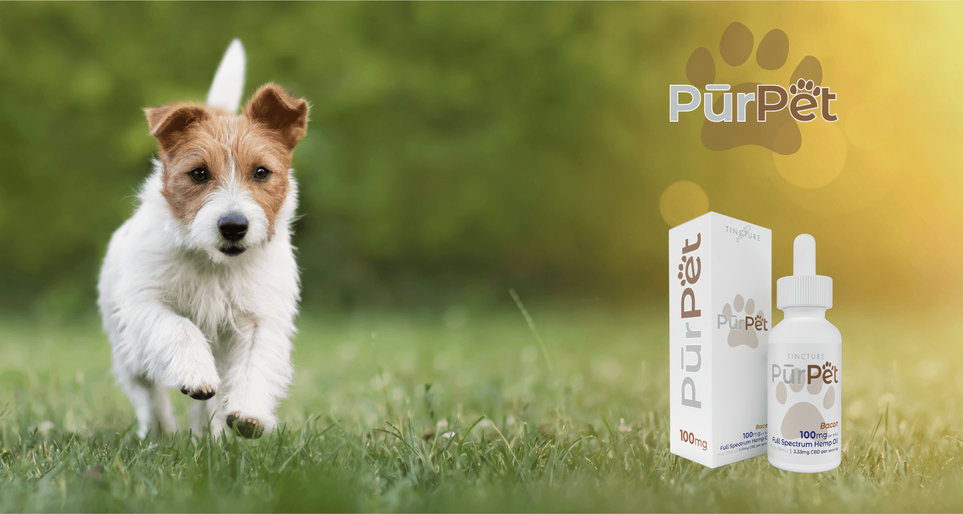 CBD Product for Pets